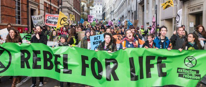 Marx21 Bülteni: Antroposen Dönemde Yeşil-Sol Siyaset